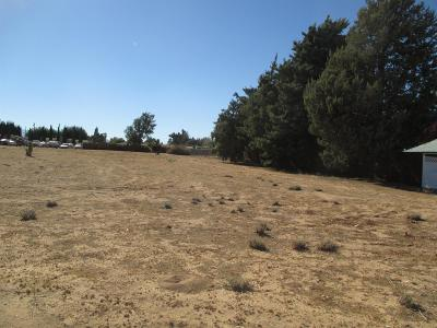 Hesperia Residential Lots & Land For Sale: Tenth Avenue #92345