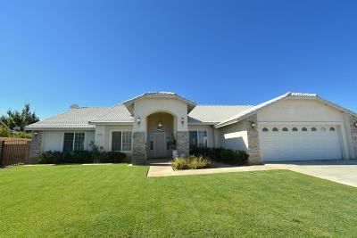 Hesperia Single Family Home For Sale: 16569 Flintridge Street