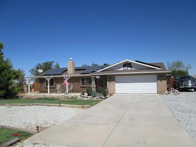 Apple Valley Single Family Home For Sale: 21870 Hercules Street