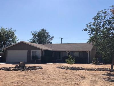 Apple Valley Single Family Home For Sale: 14850 Nanticoke Road