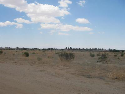 Lucerne Valley Residential Lots & Land For Sale: Foothill Rd Road