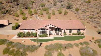 Wrightwood Single Family Home For Sale: 7878 Jack Rabbit Road