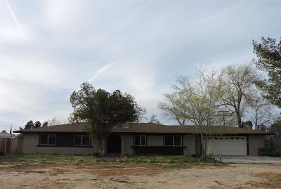 Apple Valley Single Family Home For Sale: 13910 Jicarilla Road
