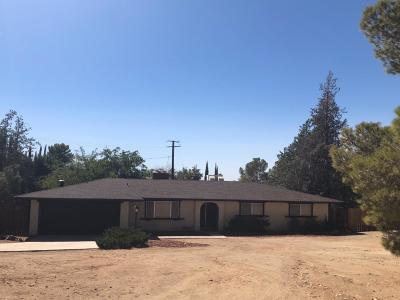 Apple Valley Single Family Home For Sale: 16242 Rimrock Road