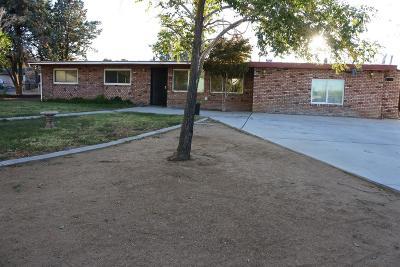 Hesperia Single Family Home For Sale: 8962 Peach Avenue