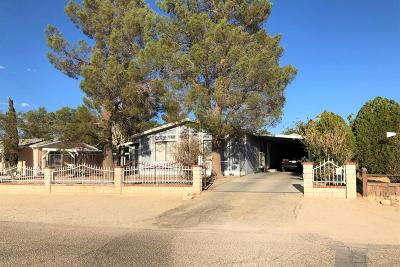 Adelanto Single Family Home For Sale: 19007 Panther Avenue