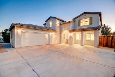 Hesperia Single Family Home For Sale: 6688 Banyan Avenue