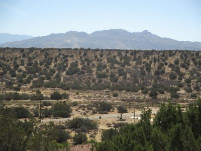 Hesperia Residential Lots & Land For Sale: Summit Valley Road