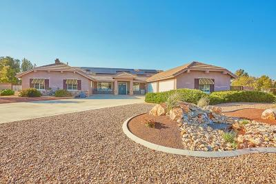 Apple Valley Single Family Home For Sale: 19610 Tuluka Court