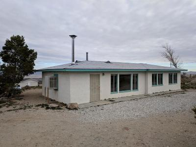 Lucerne Valley Single Family Home For Sale: 32438 Spinel Road