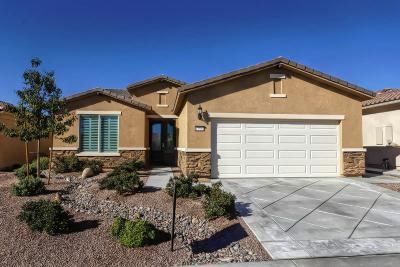 Apple Valley Single Family Home For Sale: 11564 Cascade Street
