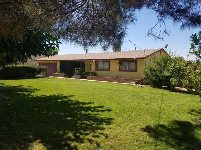 Hesperia Single Family Home For Sale: 11880 4th Avenue