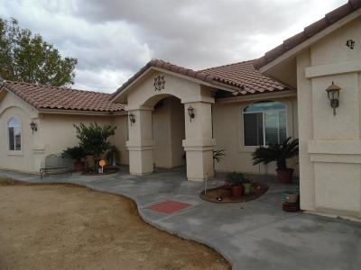 Barstow Single Family Home For Sale: 27501 Brucite Road