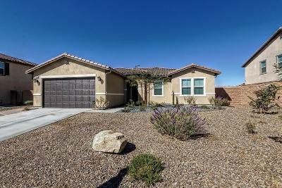 Victorville Single Family Home For Sale: 14366 Lorado Way