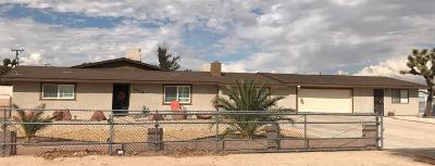 Hesperia Single Family Home For Sale: 14726 Deodar Street
