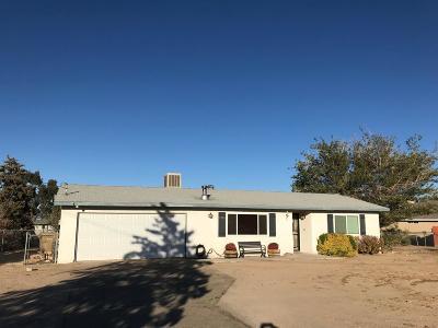 Hesperia Single Family Home For Sale: 9381 San Pablo Avenue