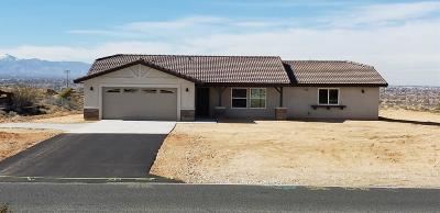 Apple Valley Single Family Home For Sale: 9720 Kiowa Road
