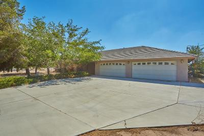 Hesperia Single Family Home For Sale: 16045 Ash Street