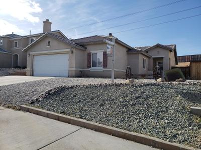 Victorville Single Family Home For Sale: 16492 Manchester Street