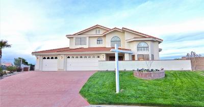 Victorville Single Family Home For Sale: 13685 Sierra Vista Drive