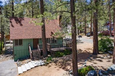 Wrightwood Single Family Home For Sale: 1749 Linnet Road