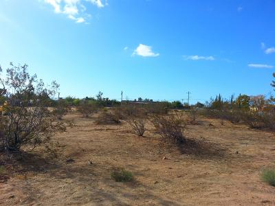 Hesperia Residential Lots & Land For Sale: Balsam Avenue