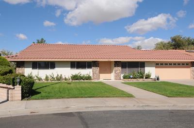 Victorville Single Family Home For Sale: 13820 Dahlgren Drive