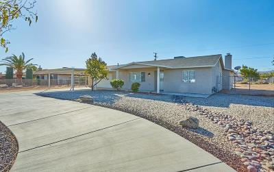 Apple Valley Single Family Home For Sale: 21193 Neola Road