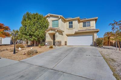 Hesperia Single Family Home For Sale: 14138 Verde Street