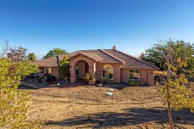 Pinon Hills Single Family Home For Sale: 9353 Pinon Hills Road