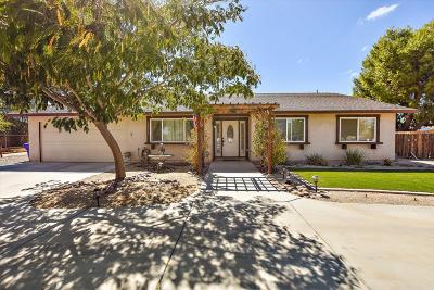 Apple Valley Single Family Home For Sale: 22211 Mohican Avenue