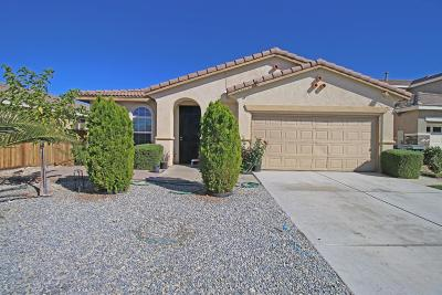 Victorville Single Family Home For Sale: 13215 Andrea Drive