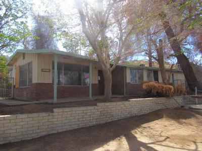 Apple Valley Single Family Home For Sale: 8063 Turtle Road
