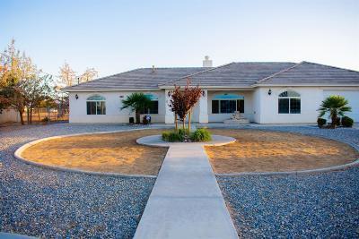 Hesperia Single Family Home For Sale: 16077 Manzanita Street