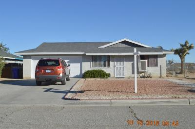 Adelanto Single Family Home For Sale: 10914 Aztec Lane