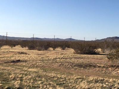 Apple Valley Residential Lots & Land For Sale: Flint Road