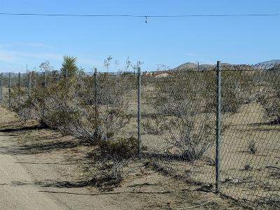 Lucerne Valley Residential Lots & Land For Sale: Cody Road