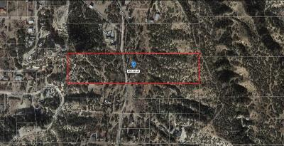 Wrightwood Residential Lots & Land For Sale: Wild Horse Canyon Road