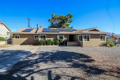 Apple Valley Single Family Home For Sale: 16417 Tolowa Road