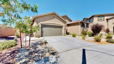 Victorville Single Family Home For Sale: 13214 Yarmouth Court