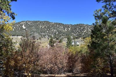 Wrightwood Residential Lots & Land For Sale: Big Pines/Logwood Drive