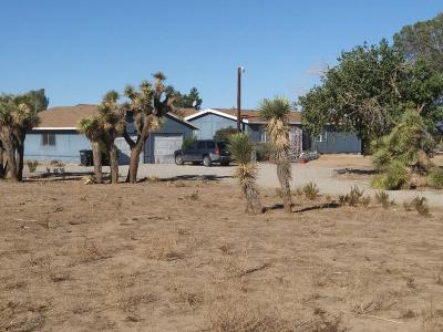 Phelan Single Family Home For Sale: 11132 Anderson Ranch Road