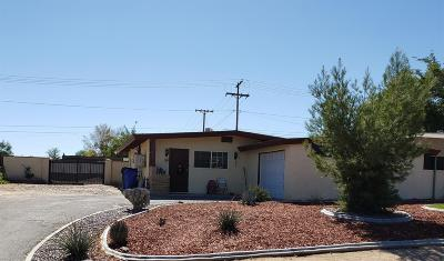 Victorville Single Family Home For Sale: 16615 Joshua Street