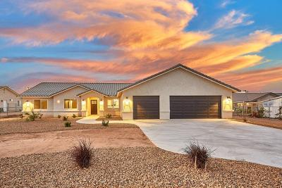 Hesperia Single Family Home For Sale: 17190 Danbury Avenue