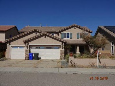 Victorville Single Family Home For Sale: 11986 Alana Way
