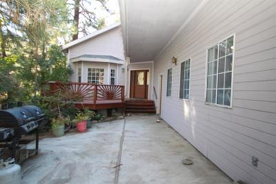 Wrightwood Single Family Home For Sale: 1790 Betty Street