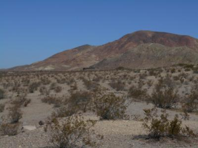 Newberry Springs Residential Lots & Land For Sale: Silver Valley & Dune Rd Road