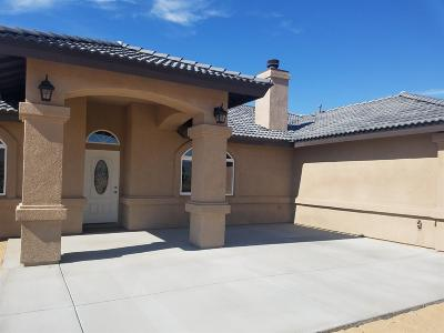 Apple Valley Single Family Home For Sale: 23618 W Shirwaun Road