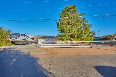 Apple Valley Single Family Home For Sale: 13193 Franceska Road