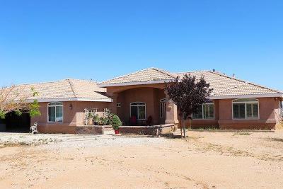 Phelan Single Family Home For Sale: 7576 Olivine Road